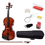 IMusic 4/4 Full Size Gloss Brown Varnish Violin with Case and Ebony Accessories,Special Ebony Fingerboard and Bow,Gloss Brown(Bridge,Tuner,Extra String,Lightweight Hard Case,Rosin,Harmonica,Bow,Strap)