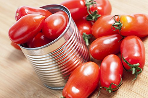 Indeterminate Tomato - 38mg Organic Martino's Roma Tomato Seeds ~ Rare Italian Heirloom Indeterminate