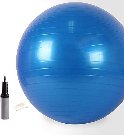 FLY FLU Pelota Ejercicio Pilates, Bola De Yoga 65CM Pelota De ...
