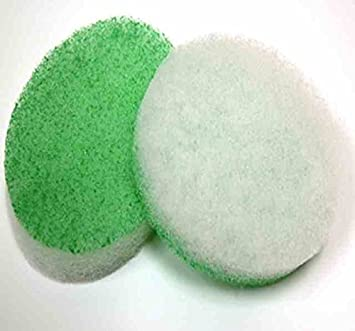 Amazon Com Exfoliating Sponge Body Sponge Scrub Oval Shape 6