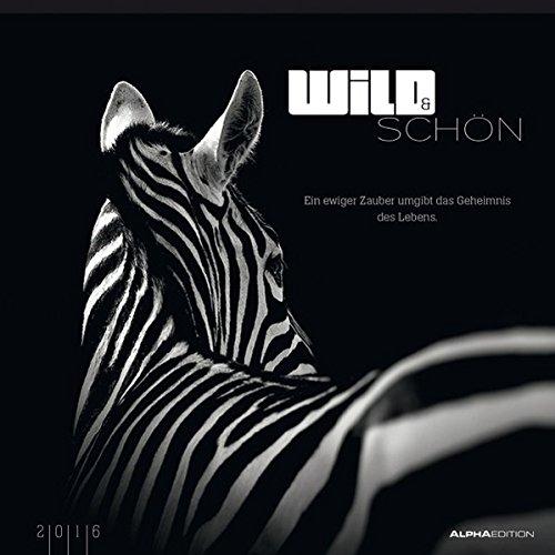 Wild & Schön 2016 - Bildkalender (33 x 33) - mit Foliendeckblatt - Tierkalender