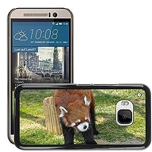 Etui Housse Coque de Protection Cover Rigide pour // M00135734 Red Panda Zoo Cute Animals // HTC ONE M9