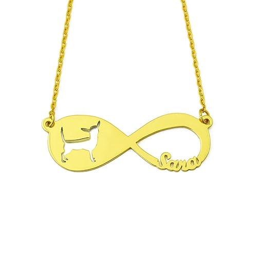 Personalizado Infinito Chihuahua nombre collar infinity colgante, Custom Chihuahua collar perro amante regalo Memorial Regalo: Amazon.es: Joyería