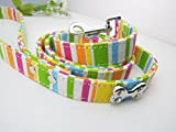 Gigamax(TM) 4 Feet Long Pet Dog Leash Lead Rainbow Durable Canvas Large Dog Puppy Harness 1.5/2.0/2.5cm Width [ Colorful L ]