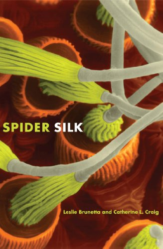 000 Silk - Spider Silk: Evolution and 400 Million Years of Spinning, Waiting, Snagging, and Mating