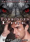 Forbidden Link (Prophecy Series Book 3)