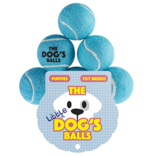 [The Little Dog's Balls - 6 Small Blue Tennis Balls for Dogs, Premium Mini Dog Toy for Puppies & Small Dogs, Puppy Exercise, Play, Training & Fetch. No Squeaker, the King Kong of Little Dog] (Adult Floating Ghost Halloween Costumes)