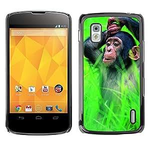 Queen Pattern - FOR LG Nexus 4 E960 - Monkey Cute Animal - Cubierta del caso de impacto con el patr???¡¯???€????€?????n Art Designs