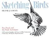 img - for Sketching Birds book / textbook / text book