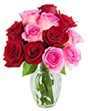 KaBloom Bouquet of 12 Red and Pink Roses with Vase