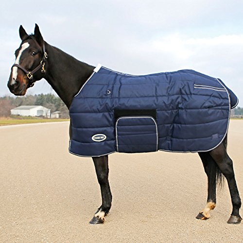 Quilted Nylon Stable Blanket - 1