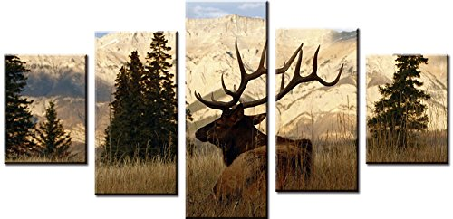 XDXART 5 pcs Home Decor Pictures Canvas Printed Painting, Decor Art - Elk and Mountain Wall Art Oil Paintings Printed Pictures (Without Wooden Frames) ()