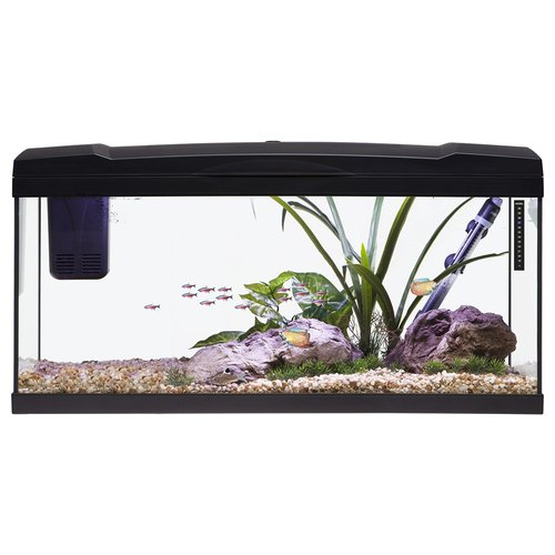 Marina Basic LED Aquarium 96 l schwarz