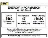 "Minka-Aire F753-BNW, Java, 54"" Ceiling Fan, Brushed Nickel Wet Finish"