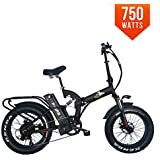 Bpmimports BPM F15-RS 750W Full Suspension 17AH 48V Fat TIRE Electric Bike Bicycle Folding