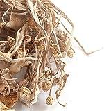 Enoki Mushrooms, Whole (Dried) - 4 oz.
