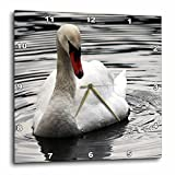 3dRose Sven Herkenrath Animal - A Photo of a Pretty and Elegant Swan in the Water - 13x13 Wall Clock (dpp_275849_2)