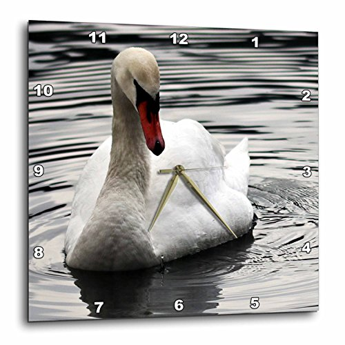 3dRose Sven Herkenrath Animal - A Photo of a Pretty and Elegant Swan in the Water - 13x13 Wall Clock (dpp_275849_2) by 3dRose