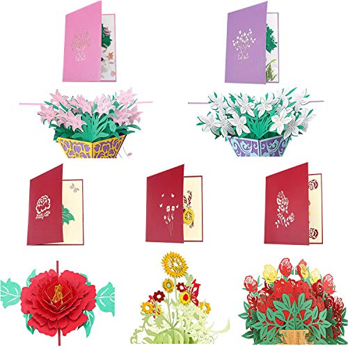 Frienda 5 Pieces 3D Greeting Cards Pop up Card with Envelope for Valentine Birthday Anniversary Wedding Mother's Day (Style Set 1)