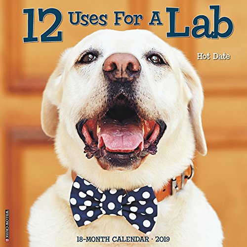 Just Black Lab Puppies - 12 Uses for a Lab 2019 Wall Calendar (Dog Breed Calendar)