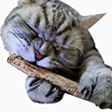 Ikevan 2PCS Pet Cat Kitten Chew Stick Toy Catnip Molar