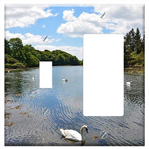 1-Toggle 1-Rocker/GFCI Combination Wall Plate Cover - Inlet Booked River Coast Pier Swans Birds (Plates Bird Pier One)