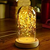Lingkai Glass Dome Lamp Bell Jar Display with Switch Desk Lamp Solid Wood Base String Bedside Table Lamp with USB LED Warm Fairy Starry String Lights