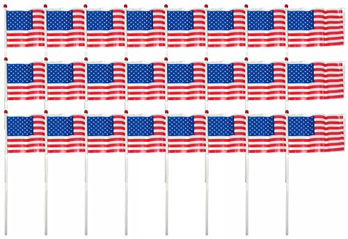 July Box (Set of 24 Plastic Patriotic American Flags! 6