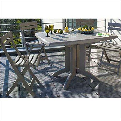 タカショー ベガ/マイアミ テーブルチェア5点セット 『ガーデンチェア ガーデンテーブル セット』 B075WSLP32