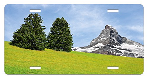 Mountain License Plate by Ambesonne, View of Mountain Matterhorn in a Peaceful Summer Day with Sun Rays Meadow Print, High Gloss Aluminum Novelty Plate, 5.88 L X 11.88 W Inches, - Ray Prints Day