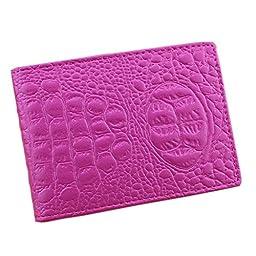 Boshiho Driving License Holder ID Case Zipper Case Remote Wallet Bag Gift Set (Hot Pink)
