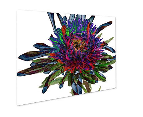 Ashley Giclee Abstract Flower Aster, Wall Art Photo Print On Metal Panel, Color, 24x30, Floating Frame, AG1536760