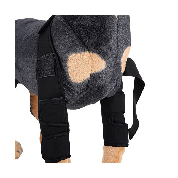 SELMAI Dog Front Leg Brace Support Canine Paw Compression Wrap Shoulder Protects Wounds Brace Extra Supportive Hock… Click on image for further info. 3
