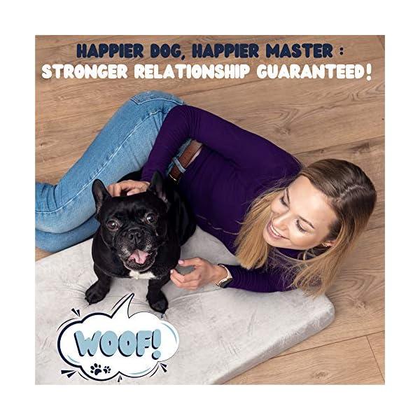 51MDMyuiIXL ZENAPOKI Dog Bed - M - Orthopädisches Kissen für Hunde, gut die Gelenke - Hundebett flauschig aus Memory Schaum, Dog Bed…