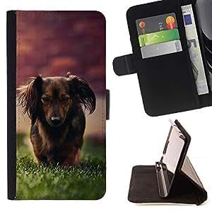 Momo Phone Case / Flip Funda de Cuero Case Cover - Dachshund Little Brown perro de pelo largo Hierba - LG Nexus 5 D820 D821