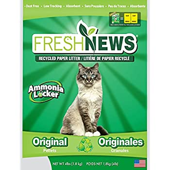 Amazon Com Purina Yesterday S News Non Clumping Paper