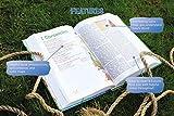 NRSV, Adventure Bible, Hardcover, Full Color