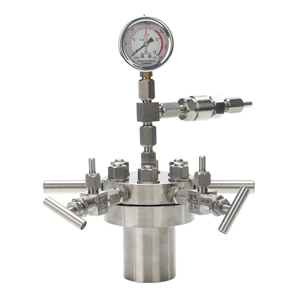 BAOSHISHAN 25ml Hydrothermal Synthesis Autoclave Reactor 16Mpa 300C with 316 Stainless Steel Lining Customized (25ml)