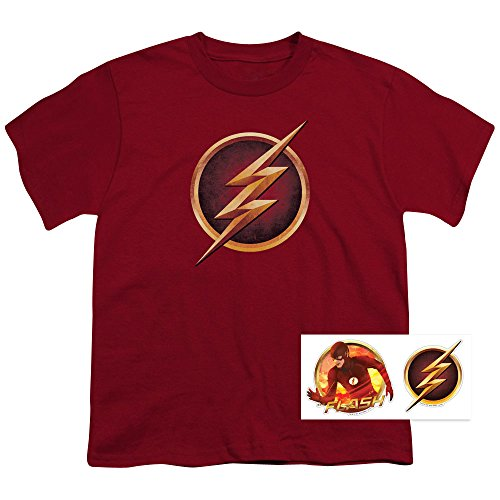 The Flash Distressed Logo T Shirt & Exclusive Stickers (Distressed Logo T-shirt)