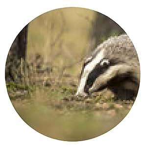 alfombrilla de ratón Badger Europea - ronda - 20cm