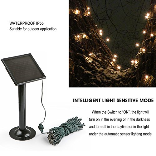 Solar String Lights Indoor : 100 LEDs Solar String Light for Outdoor Indoor Use IP55 Waterproof, 8 Modes with Timer, One ...