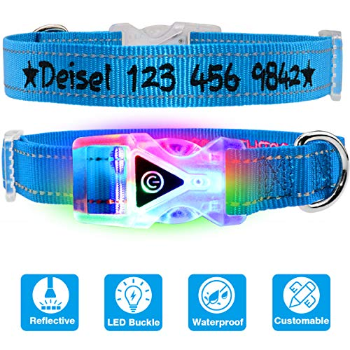 TagME Personalized Dog Collar Led, Custom Collar Embroidered & Waterproof Light Buckle,Sky Blue Medium