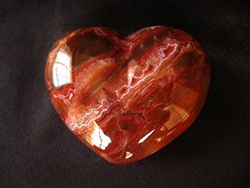 Petrified Wood Large Decorative Heart