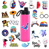 Cute Water Bottle Stickers for Kids Teens Girls 100PCS, Vinyl Waterproof Stickers Decal for Laptop Car Notebook Suitcase Phone Guitar Luggage Computer (Fresh 100)