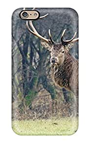 Andre-case Fashionable Iphone 6 case cover For Deer protective case cover QJFwAN1VbeS