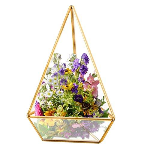 Homeideas glod geometric terrarium modern clear glass