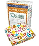 Designer Weighted Blanket for kids (or adult) | Dozens of cute styles in many sizes | Gravity blankets may help relieve anxiety, stress & insomnia | Style - Hedgehog | Cotton - 6 lbs