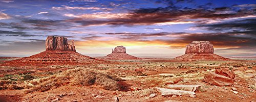 BannersNStands Reptile Habitat, Terrarium Background, Cool Desert Sky - (Various Sizes) (12