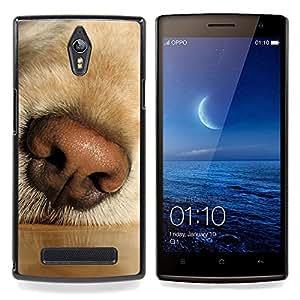 Ihec Tech Nariz Labrador Retriever Hocico de perro Hocico / Funda Case back Cover guard / for OPPO Find 7 X9077 X9007