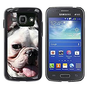 Vortex Accessory Hard Protective Case Skin Cover For Samsung Galaxy Ace 3 ( Gt-S7270 / Gt-S7275 / Gt-S7272 ) - French Bulldog Boston Terrier Mouth Dog